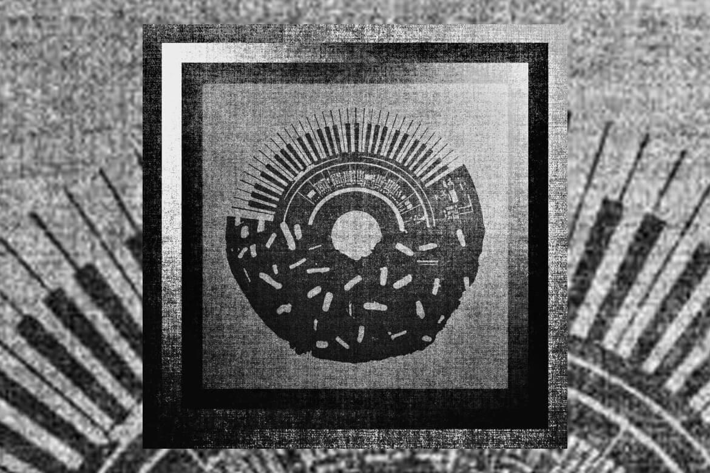 Basement Donuts Ableton Live Sample Pack | SoundPacks.com